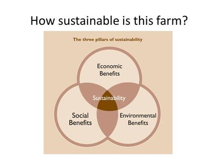 How sustainable is this farm?. Economic Benefits The diversified approach of WVF makes for steady income which supports 3 generations of the Caserta family.
