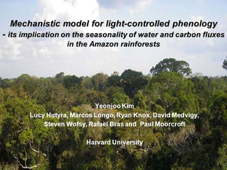 Mechanistic model for light-controlled phenology - its implication on the seasonality of water and carbon fluxes in the Amazon rainforests Yeonjoo Kim.