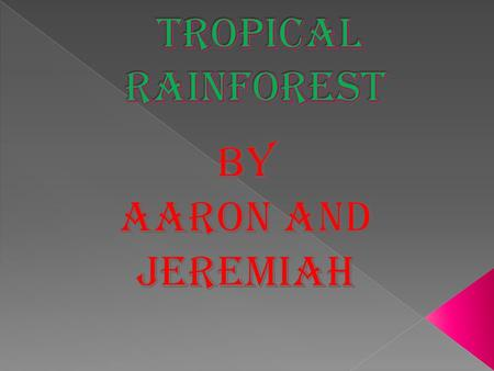  * Tropical rainforest biomes are found in the lower latitudes.  * The temperture is mostly around 80 degrees.  * There isn't a big change in seasons.