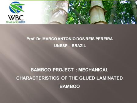 Prof. Dr. MARCO ANTONIO DOS REIS PEREIRA UNESP - BRAZIL BAMBOO PROJECT : MECHANICAL CHARACTERISTICS OF THE GLUED LAMINATED BAMBOO.