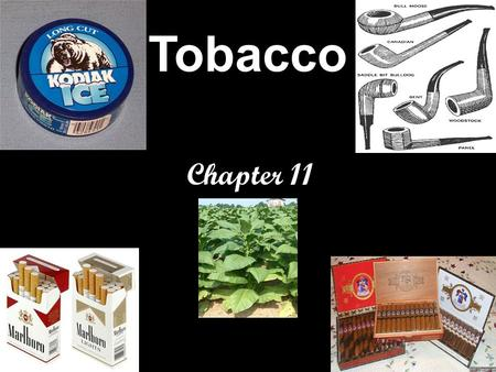 Tobacco Chapter 11. All Tobacco Products Are Dangerous Nicotine is the addictive drug found in all tobacco products. Cigarette smoke contains more than.