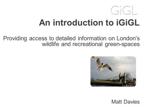 An introduction to iGiGL Providing access to detailed information on London's wildlife and recreational green-spaces Matt Davies.