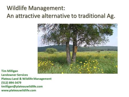 Tim Milligan Landowner Services Plateau Land & Wildlife Management (512) 894-3479  Wildlife Management: