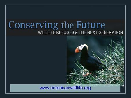 Www.americaswildlife.org. History of Vision  Fulfilling the Promise (1999)  Refuge Improvement Act 1997  Keystone Conference 1998  Conserving the.