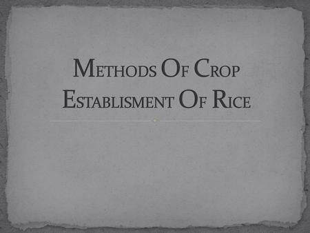METHODS OF CROP ESTABLISMENT OF RICE