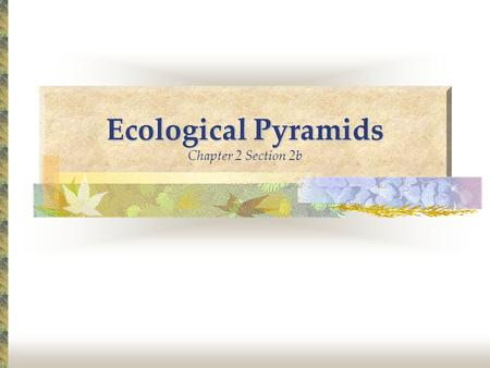 Ecological Pyramids Ecological Pyramids Chapter 2 Section 2b.