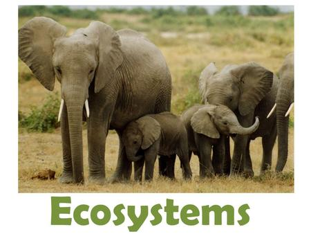 Ecosystems. Ecosystems and Life Ecology – is the scientific study of how organisms interact with their environment and all other organisms that live in.