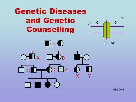 Genetic Diseases and Genetic Counselling Z ? AB C D XY Cl - GHB 2005.