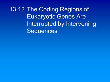 13.12The Coding Regions of Eukaryotic Genes Are Interrupted by Intervening Sequences.