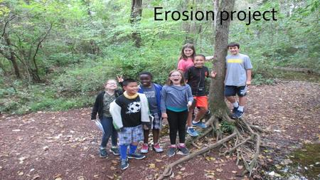 Erosion project How does erosion effect Dinosaur Park Exposed tree roots Crevices Small cliffs Trash.