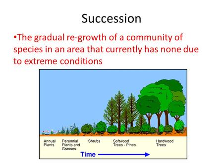 Succession The gradual re-growth of a community of species in an area that currently has none due to extreme conditions.