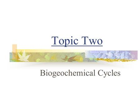 Topic Two Biogeochemical Cycles. 2-3 Carbon-Oxygen Cycle.