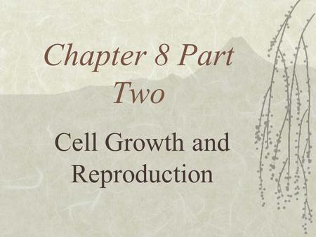 Chapter 8 Part Two Cell Growth and Reproduction Cell Size Limitations  Cells vary in size and shape  The longest cells are nerve cells which can be.