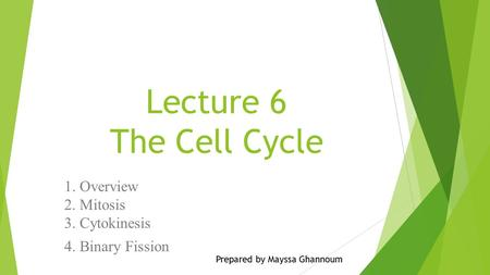 Lecture 6 The Cell Cycle 1. Overview 2. Mitosis 3. Cytokinesis 4. Binary Fission Prepared by Mayssa Ghannoum.