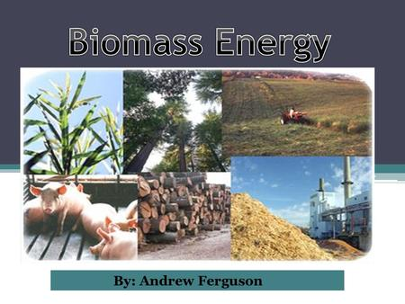 By: Andrew Ferguson.  Biomass- a renewable energy source, that is made up of biological matter from living, or recently living organisms. Mostly comes.