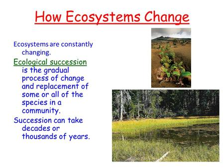How Ecosystems Change Ecosystems are constantly changing. Ecological succession is the gradual process of change and replacement of some or all of the.