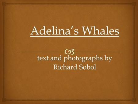 Adelina's Whales text and photographs by Richard Sobol.