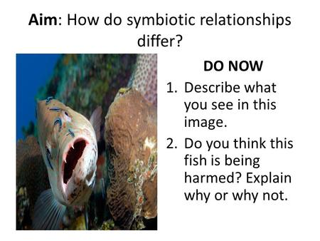 Aim: How do symbiotic relationships differ? DO NOW 1.Describe what you see in this image. 2.Do you think this fish is being harmed? Explain why or why.