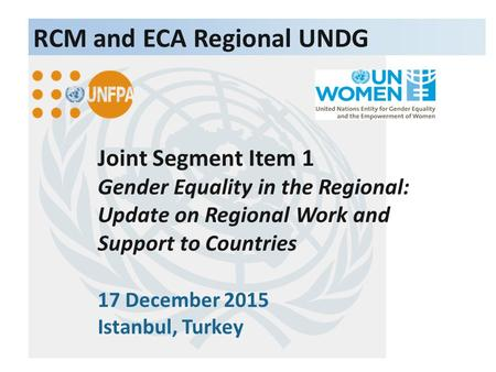 Joint Segment Item 1 Gender Equality in the Regional: Update on Regional Work and Support to Countries 17 December 2015 Istanbul, Turkey RCM and ECA Regional.