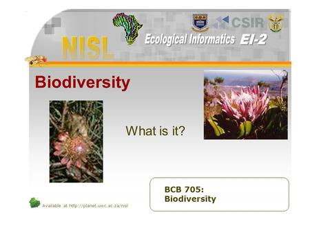 Available at  Biodiversity What is it? BCB 705: Biodiversity.