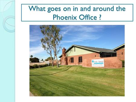 What goes on in and around the Phoenix Office ?. Programs: Six programs (Three Statewide) Budget: $5,445,565. Staff: 87 Staff and 17 Sub-contractors (plus.