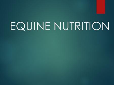 EQUINE NUTRITION.