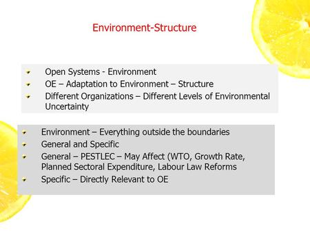 Environment-Structure Open Systems - Environment OE – Adaptation to Environment – Structure Different Organizations – Different Levels of Environmental.