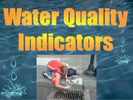 Water Quality Indicators.