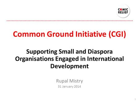 Common Ground Initiative (CGI) Supporting Small and Diaspora Organisations Engaged in International Development Rupal Mistry 31 January 2014 1.