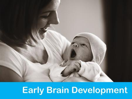 Early Brain Development. Source: Hart & Risley, 1995 THE GROWING BRAIN IS SHAPED BY THE EXPERIENCES AROUND IT 18 Age at which differences begin to appear.
