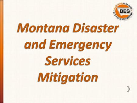 -Pre Disaster Mitigation (PDM) -Hazard Mitigation Grant (HMGP) -Flood Mitigation Assistance (FMA)/ Repetitive Flood Claims (RFC)/ Severe Repetitive Loss.