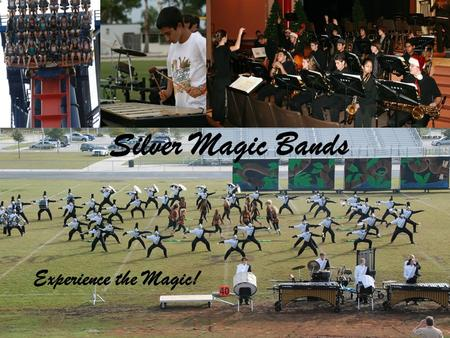 Silver Magic Bands Experience the Magic!. The Silver Magic Program Marching Band/Colorguard –June through November Wind Ensemble and Concert Band –November.