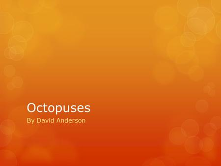 Octopuses By David Anderson.