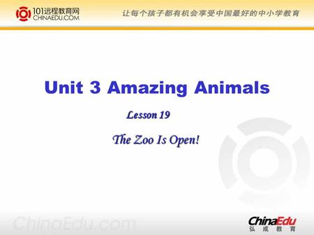 Lesson 19 The Zoo Is Open! Unit 3 Amazing Animals.