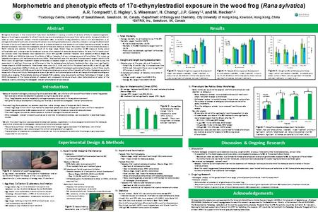 Morphometric and phenotypic effects of 17α-ethynylestradiol exposure in the wood frog (Rana sylvatica) A.R. Tompsett 1, E. Higley 1, S. Wiseman 1, H. Chang.