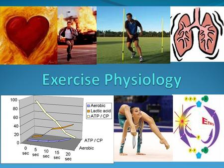 Exercise Physiology Studies a range of SYSTEMS in the human body. These systems allow us to perform the various activities we do, and more importantly.
