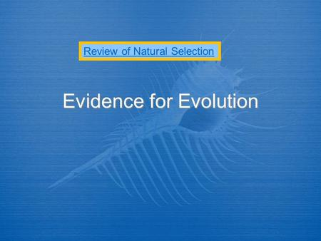Evidence for Evolution Review of Natural Selection.