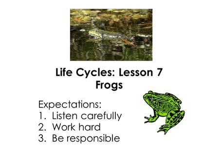 Life Cycles: Lesson 7 Frogs Expectations: 1. Listen carefully 2. Work hard 3. Be responsible.