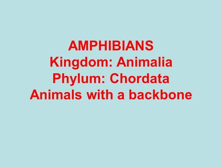 AMPHIBIANS Kingdom: Animalia Phylum: Chordata Animals with a backbone