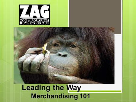 Leading the Way Merchandising 101. Our Mission ZAG is a collection of merchandise buyers for zoos, aquariums and other wildlife-related institutions and.
