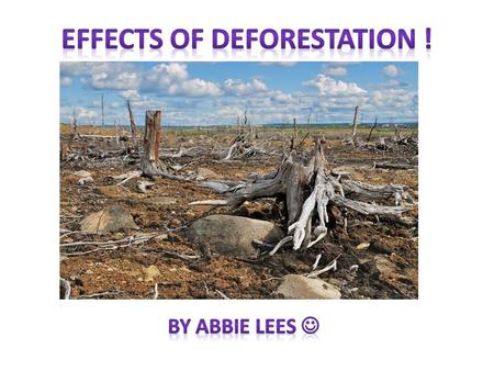 Pictures Facts on deforestation Did you know …. We lose 147 plants and animals everyday due to deforestation. forest cover over 30% of the earths total.