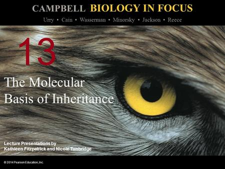 CAMPBELL BIOLOGY IN FOCUS © 2014 Pearson Education, Inc. Urry Cain Wasserman Minorsky Jackson Reece Lecture Presentations by Kathleen Fitzpatrick <strong>and</strong> Nicole.