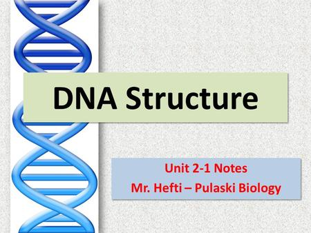 DNA Structure Unit 2-1 Notes Mr. Hefti – Pulaski Biology Unit 2-1 Notes Mr. Hefti – Pulaski Biology.