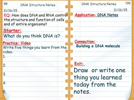 11/16/15 Starter: What do you think DNA is? 11/16/15 DNA Structure Notes Application: DNA Notes Connection: Building a DNA molecule DNA Structure Notes.