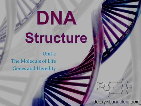Unit 2 The Molecule of Life Genes and Heredity. DNA – A Preview The Book of You –Joe Hanson (TED Ed) The Book of You.