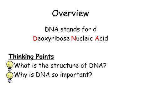 Overview DNA stands for d Deoxyribose Nucleic Acid Thinking Points What is the structure of DNA? Why is DNA so important?