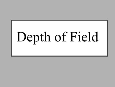 Depth of Field. SHALLOW Depth of Field *Use largest aperture – smallest f/stop # *Shoot in the shade – NO SUN! *Get close – 1-2 feet away *Use the Rule.