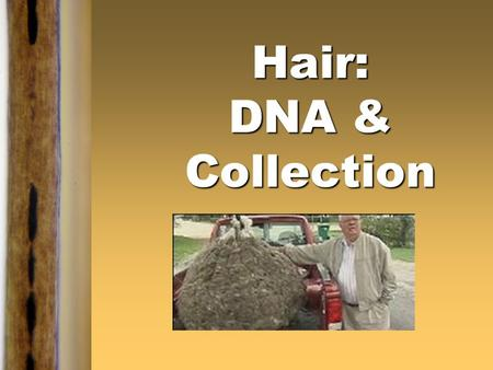 Hair: DNA & Collection. Kendall/Hunt Publishing Company1 Medulla of Different Species.