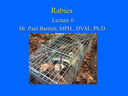 Rabies Lecture 6 Dr. Paul Bartlett, MPH., DVM., Ph.D.