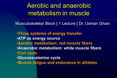 Aerobic and anaerobic metabolism in muscle